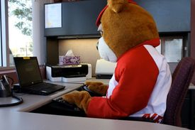Good neighbear working