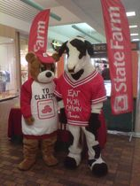 Good neighbear and chic fil a cow