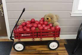 Red wagon bears balls