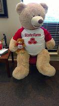 State farm bears
